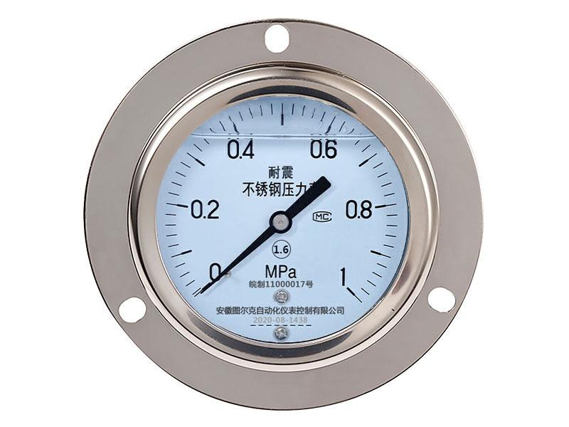 YTN-100ZT轴向带边耐震压力表